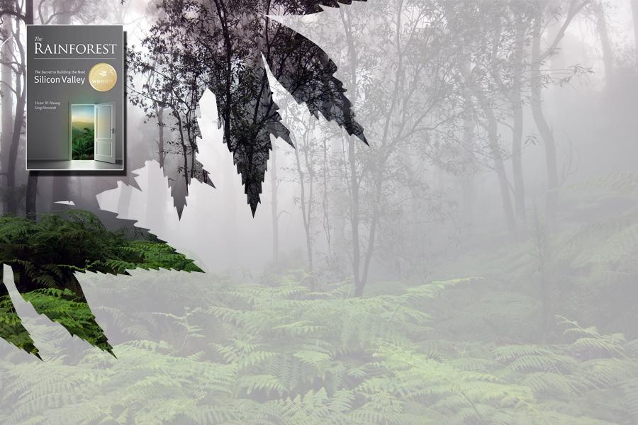 کتاب جنگل بارانی - rainforest